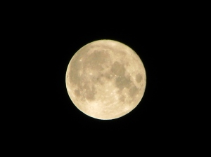 Full Moon on Rakhi Purnima